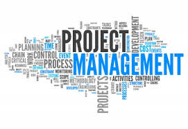 PROYECT MANAGER